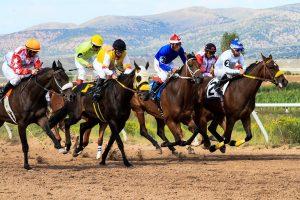 konjske dirke in športne stave