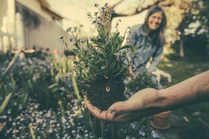 kosilnice in drugo vrtno orodje Stanlej poskrbi za uživanje na vrtu